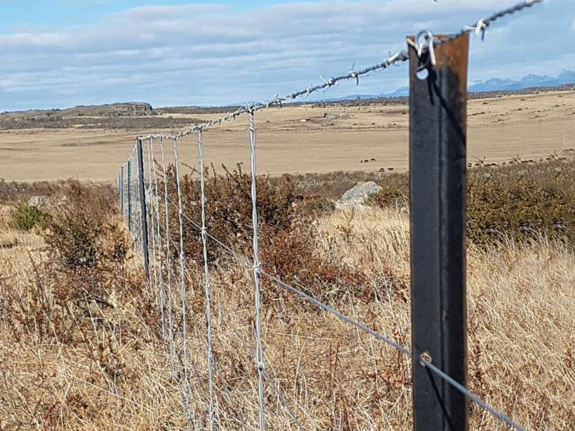 Barbed wire fences are fixed by Y post.